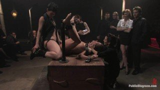 C.eclia V.ega 8 of 11